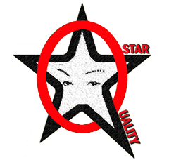 Star Quality Firm: The Digital Revolution Leaders
