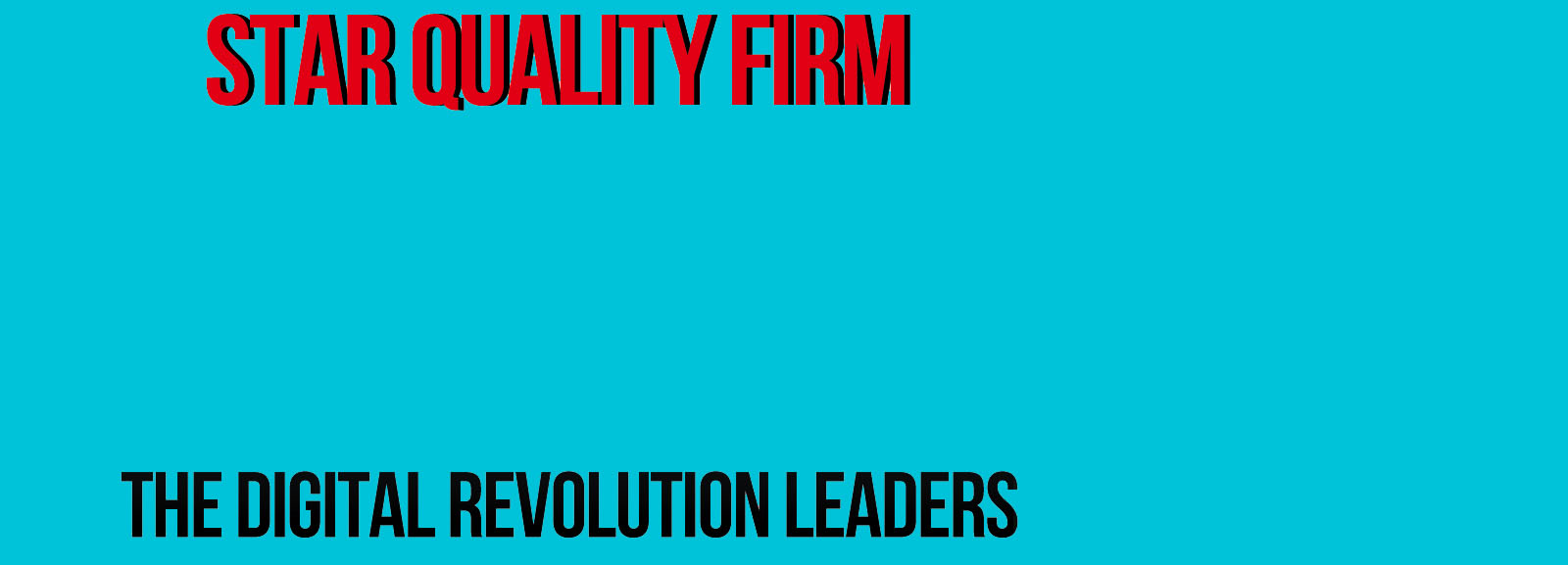 Star Quality Firm Video Banner